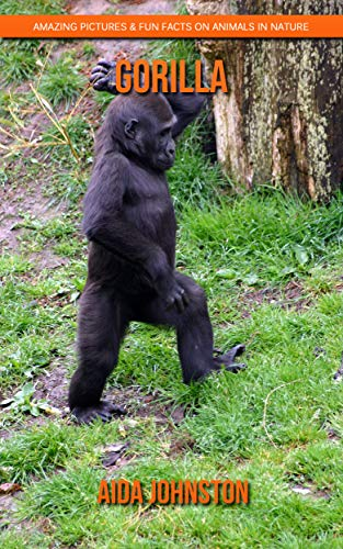 Gorilla: Amazing Pictures & Fun Facts on Animals in Nature (English Edition)