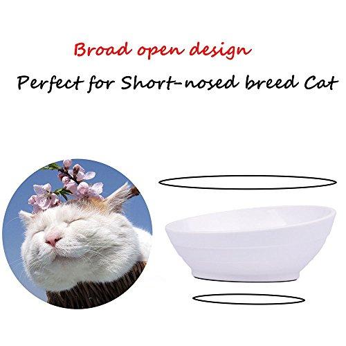 Da Jia Inc Tilt Kreative rutschfeste robuste Pet Schüssel Futternapf flach Face Cat Schüssel mit breitem Rand (Blau) - 5