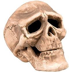 Cráneo de decoración para halloween