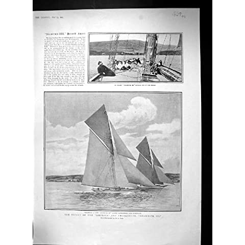 Pavone 1903 delle Signore del Fiocco-Topsails di Jackyarders dell'Acetosella dello Sfidante della Tazza