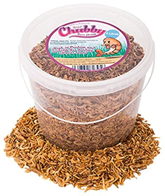 Chubby Mealworms Dried River Shrimp, 5 Litre from UKPetSupplies Ltd