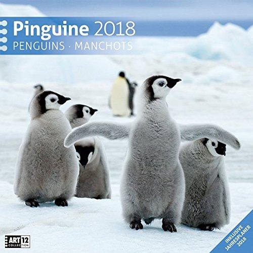 Pinguine 30x30 2018