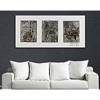 Cuadros Decorativos - Collage Plata (150x80)