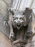 druck-shop24 Wunschmotiv: Chimera and Gargoyle of Notre