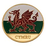 Poker Card Guard/Protector - CYMRU / WALES FLAG by newpokercardguards