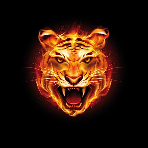 Apple iPhone 5s Housse Étui Protection Coque Tigre du Bengale Félin Feu Sac Downflip noir