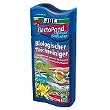 JBL BactoPond 27327 Bakterien zur Selbstreinigung vom Teich, 500 ml