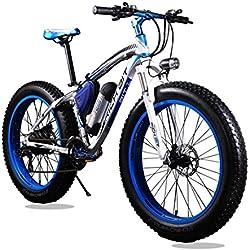 Rich Bit® RT-012 Bicicleta eléctrica Cruiser bicicleta Ciclismo 350 W * 36 V 10.4 Ah Alemania BMZ recargable 21Speed 9 marchas Horquilla de Suspensión Doble Freno de Disco Mecánico 4.0 Fat Tire Azul