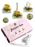 Tee-Geschenkideen