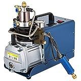 Dracotoolo Compressore d'aria elettrico della sospensione del PCP della pompa ad alta pressione di pompa ad alta pressione (30Mpa)