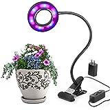 Eclairage pour plantes luminaires eclairage for Lampe pour plante d interieur