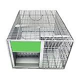 Trampa para Ratas Ratonera doméstica, Rata Viva en Jaula, Efectivo y Sanitario Reutilizable, Seguro para Personas y Mascotas (30 * 22 * 25 cm)