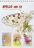 APOLLO UND CO (Tischkalender 2020 DIN A5 hoch): Herrliche Insekten. Kommt die Rettung zu spät? (Monatskalender, 14 Seiten ) (CALVENDO Tiere) -