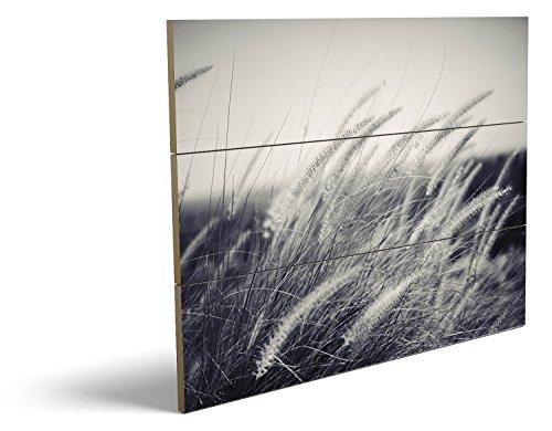 Kostüme Erdnüsse (Auf dem Feld, qualitatives MDF-Holzbild im Drei-Brett-Design mit hochwertigem und ökologischem UV-Druck Format: 80x60cm, hervorragend als Wanddekoration für Ihr Büro oder Zimmer, ein Hingucker, kein Leinwand-Bild oder)