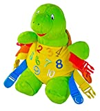 Buckle Toy Bucky Turtle - Best Reviews Guide