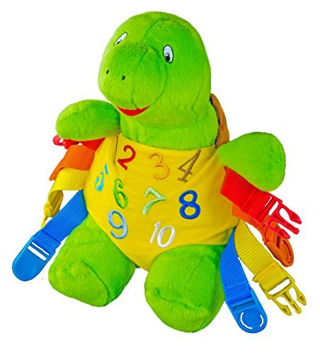 buckle-toy-bucky-turtle