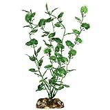 Aqueon 09809 Begonia Aquarium Plant, 9-Inch by Aqueon - Best Reviews Guide