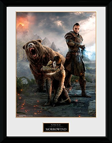 GB Eye Ltd GB Eye Gerahmtes Poster, Elder Scrolls Online morrowind, Trio, 30 x 40 cm, Verschiedene