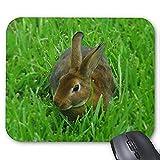 Gaming-Mausunterlage Mousepad Lovely Rabbit Mousepad Series Ziemlich Kaninchen Mauspad Bunny Rabbit Mauspad Rechteck Mousepads