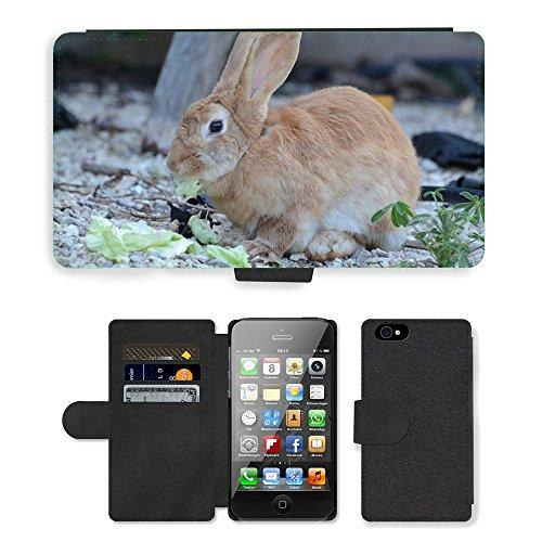 Just Mobile pour Hot Style Téléphone portable étui portefeuille en cuir PU avec fente pour carte//m00138211Lapin Marron Animal//Apple iPhone 44S 4G