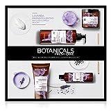 L'Oréal Paris Botanicals Lavanda, Cofanetto Trattamento per Capelli Delicati, 4 Prodotti, senza Solfati, Siliconi, Parabeni o Coloranti