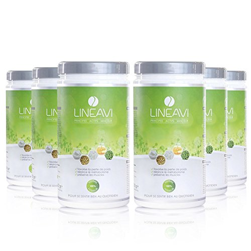 LINEAVI Principes Actifs Minceur | substitut de repas | milk shake minceur | combination des protéines: soja, riz, petits pois, petit-lait | sans lactose et sans gluten | 6x500g