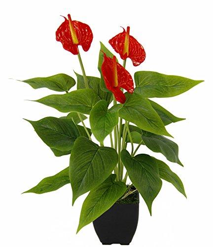 Flair Flower Anthurium-Pflanze im Topf, Polyester, Kunststoff, Rot, 42 x 20 x 20 cm