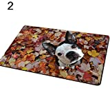 Terzsl Anti-Rutsch-Fußmatte mit niedlichem Hundemotiv, rechteckig, für Schlafzimmer, Küche, modernes Zuhause, 2#, Einheitsgröße
