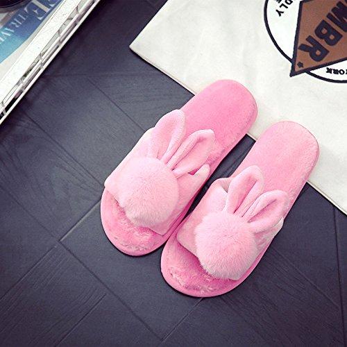 Doghaccd Pantoufles, Pantoufles De Coton Femelle Hiver Épais Salon Dans La Belle Piscine Anti-dérapant, Doux Pantoufles D'hiver En Peluche En Peluche Pink2
