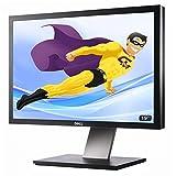 'Flachbildschirme PC 19LCD DELL P1911B 48cm 1440x 900verstellbar DVI VGA Hub USB VESA