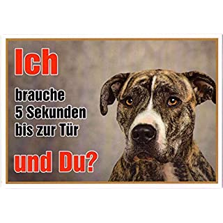 American Staffordshire Side Approx 21 x 15 cm Pack of 2 Laminated Waterproof Ich Brauche 5 Sekunden bis zur Tür and you?