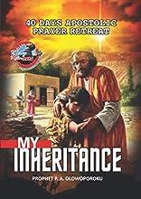 My Inheritance: Mercy Rain 40 days Apostolic Prayer Retreat Manual 2020
