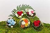 Rosen-te-amo Haltbare rote Rosen, Blumen-Strauß im Vase mit Herz-Form-Das Muttertags Geschenk Konserviertes ECHTE Gesteck im Keramik