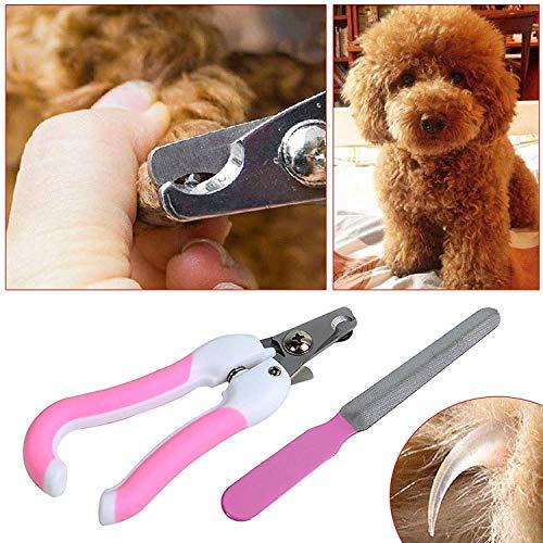 Wized-Pet - Cortauñas para Perros y Gatos + Tijeras de Filtro para pequeños Animales medianos (Rosa)