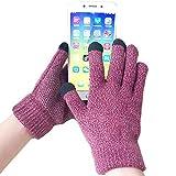 iEverest Unisex Touchscreen Handschuhe Anti-Rutsch-Handschuhe Lover Handschuhe dicke Handschuhe Smartphone Touchscreen Handschuhe für das Fahren und Telefonieren im Freien Winddicht (Weinrot)