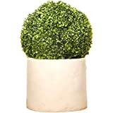 Garden Hub Artificial Boxwood Leaves Topiary Ball (18cm X 18cm)