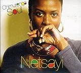Songtexte von Netsayi - Chimurenga Soul