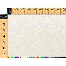 Tela de tapicería, tela de tapicería, tela de tapicería, tela, tela de la cortina, tela-cuero, Struzzo, crema blanca - versátil cuero con relieve de piel de avestruz con clase