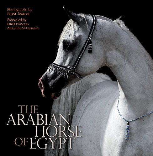 The Arabian Horse of Egypt (Books Horse Arabian)