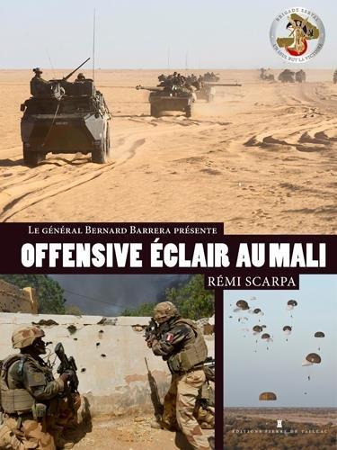 OFFENSIVE ECLAIR AU SAHEL, La Brigade Serval au combat