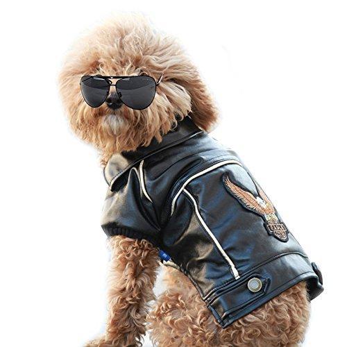 für den Winter, PU-Leder, Motorradjacke für Hunde und Haustiere, Lederjacke, wasserdicht, XS ()