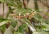 Insekten Terraristik (Tischkalender 2015 DIN A5 quer)
