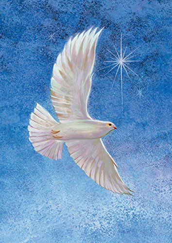 Toland Home Garden Starry Taube 71,1x 101,6cm Deko Winter Weihnachten Religiöse Peace Faith House Flagge (Große Winter-outdoor-flags)