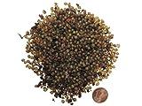 SUPERWURM Regenwurmkokons 1000 Stück, Kompostwürmer, Gartenwürmer