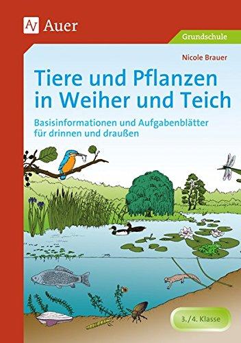 Tiere und Pflanzen in Weiher und Teich: Basisinformationen und Aufgabenblätter für drinnen und draußen (3. und 4. Klasse)