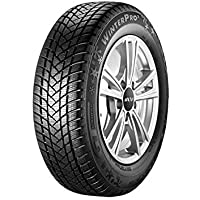 GT Radial 100 a3183 – 195/65/R15 91T – S/B/