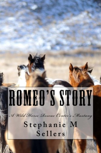 Romeo's Story: A Wild Horse Rescue Center's Mustang (English Edition)