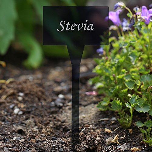 Verre acrylique pflanzschilder carré gris transparent, résistant aux intempéries et élégant, kräuterschilder pflanzenstecker plusieurs nom, et prénom Stevia
