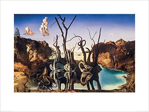 Salvador Dali Laminiert Swans Reflecting Elephants Kunstdruck 80 x 60 cm - Swans Reflecting Elephants Von Dali