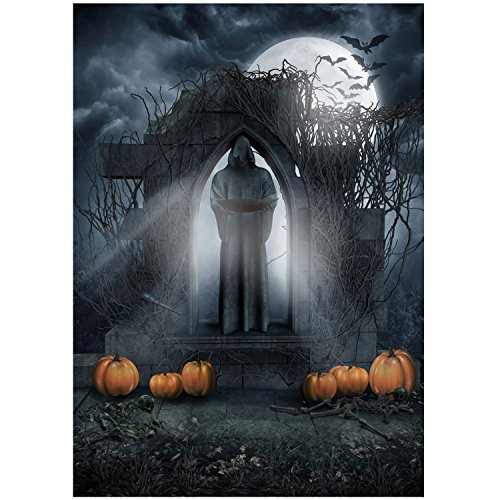 10 x 10 ft Vinyl Halloween Fotografie Hintergrund Studio Foto Hintergrund Requisiten Halloween Dekoration Supplies Death Tür Stil